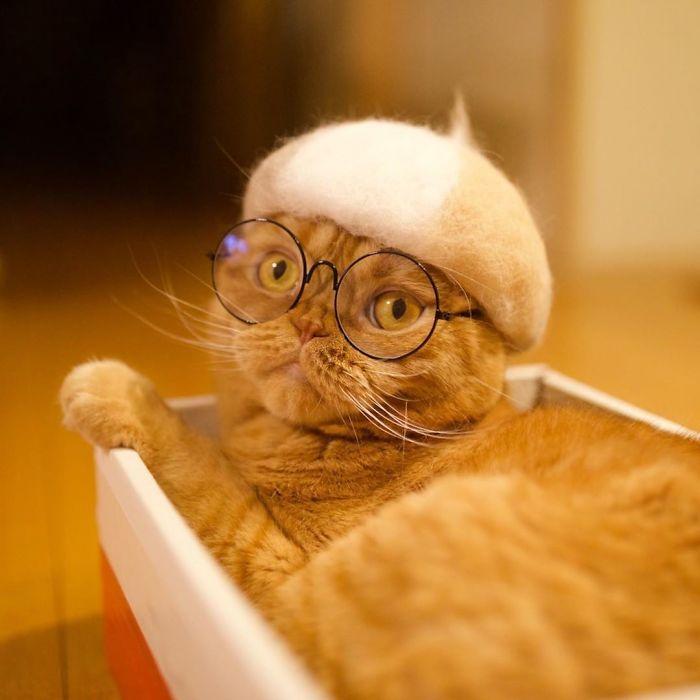 貓咪掉毛 自產自製創意配件 畫家