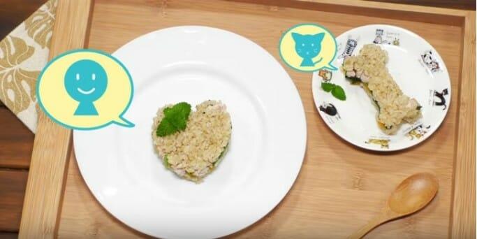 貓咪鮮食 營養又健康的米漢堡 可愛的米漢堡