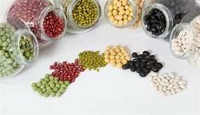 狗狗膀胱發炎 要吃什麼比較好? 豆類
