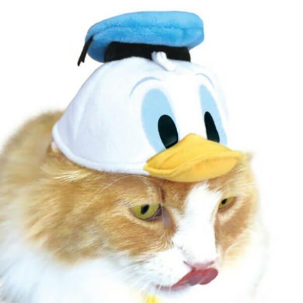 貓咪帽子 品牌necos與迪士尼合作 唐老鴨款