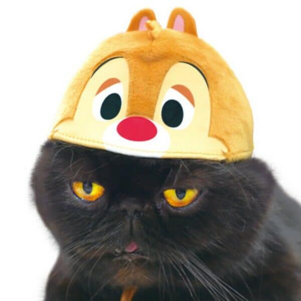 貓咪帽子 品牌necos與迪士尼合作 蒂蒂款