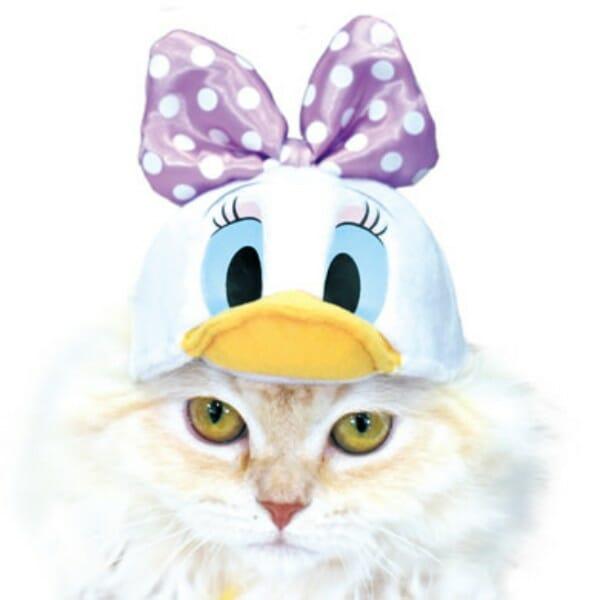 貓咪帽子 品牌necos與迪士尼合作 黛絲款