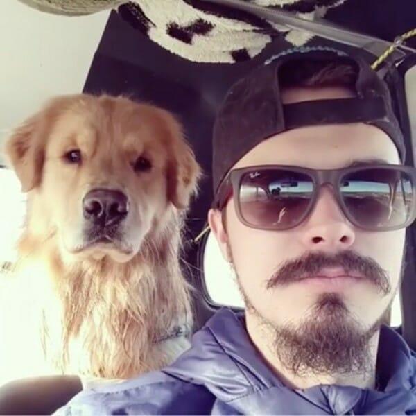 黃金獵犬 模仿鏟屎官變臉 後面那位,你是什麼表情
