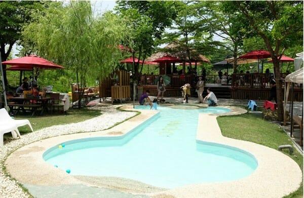 寵物休閒 台南夏日好去處 狗骨頭泳池