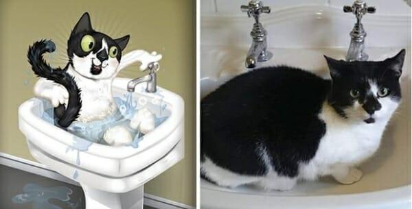 寵物插畫家 神筆畫出寵物寫實神情,只透過一張照片... Lambo老是喜歡待在洗手盆中