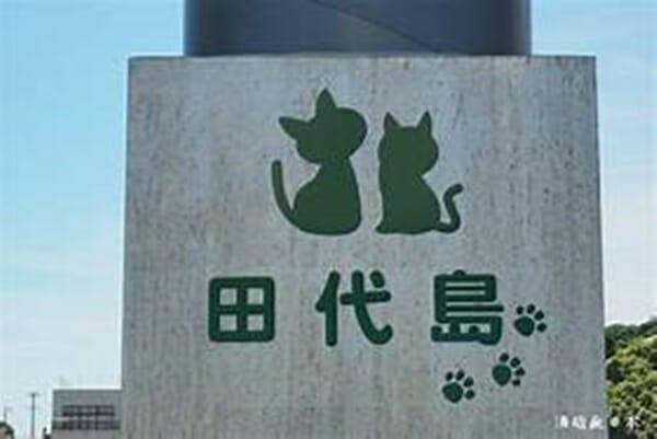 貓奴 必去日本田代島 看看這招牌就知道島上的居民有多愛牠們