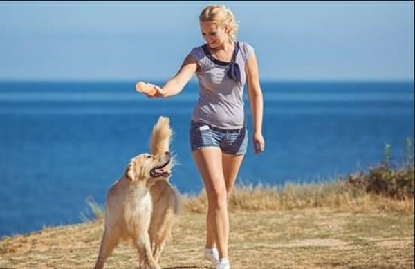 遛狗也是一種運動 ,國際研究說明。 不僅健康,更能促進彼此間的互動