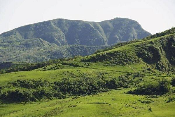 拉不拉多 之山看牠靜靜的趴在那 你看到了嗎?