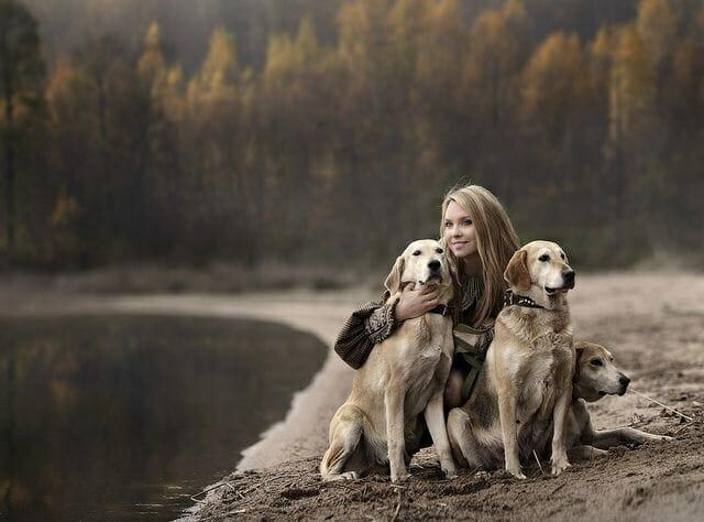 狗狗的陪伴 多一個很可以 愛加倍
